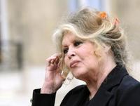 La fondation Brigitte Bardot, a vivement critiqué la tenue d'une formation sur l'abattage rituel à Grenoble