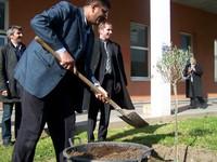 Ziad Medoukh (devant), Pascal Binczak (à droite) et David Proult ensemble pour planter l'olivier