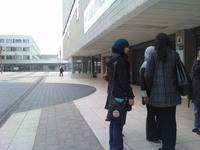 Assia, Wissal, Rihab et Hizia, étudiantes en 2e année de psychologie : « La fac, ça devient la jungle. »