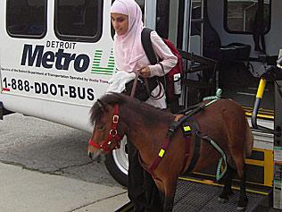 Le poney, planche de salut pour une jeune aveugle musulmane