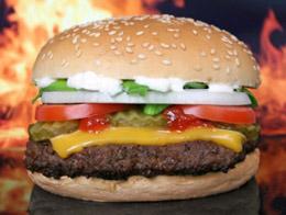 Burger halal : indigestion électorale à Roubaix
