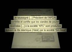 Reportage censuré de M6 : les poulets de KFC non halal (vidéo)