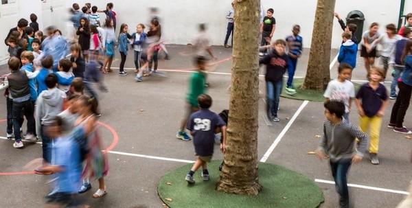 Laïcité à l'école : le Conseil des Sages, l'émergence d'une nouvelle juridiction ?