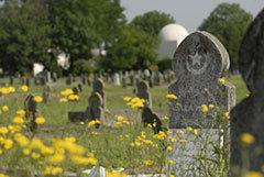 L'expérience de la mort : visiter les cimetières réveille les cœurs