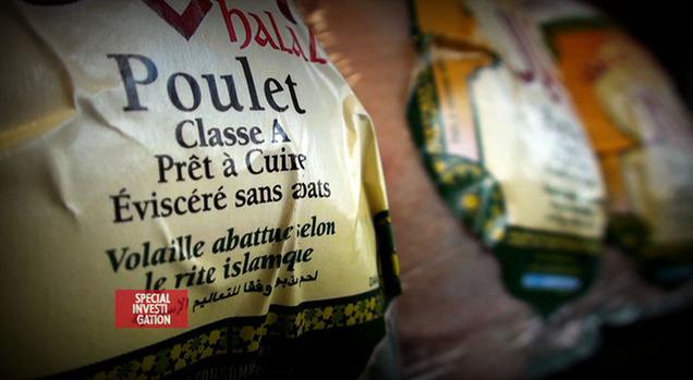 """Image extraite du documentaire """"Halal : les dérives d'un  nouveau business"""". © Canal+"""