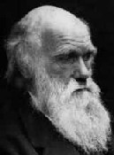 Charles Darwin, auteur
