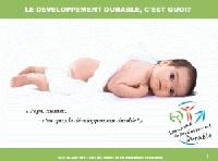 Le Développement Durable pour les Nuls