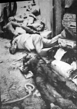 Réfugiés massacrés en Sept. 1982