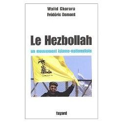 Hezbollah : un éclairage nouveau