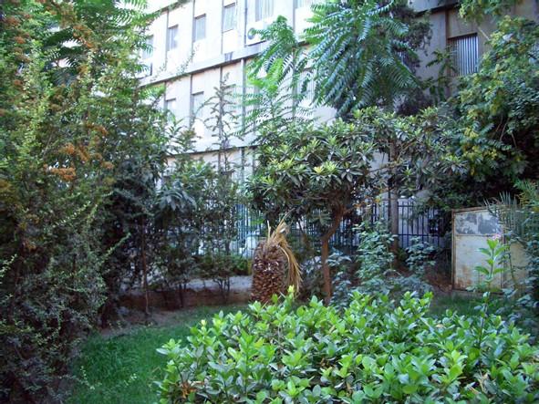 Le tombeau d'Ibn Taymiyya, dans l'arrière-cour d'un hôpital