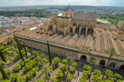 Sainte-Sophie reconvertie en mosquée : une indignation sélective