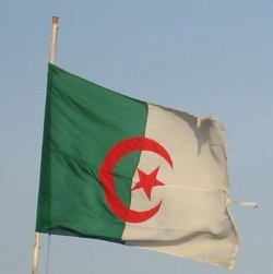 Alger:  un double attentat fait  17 morts