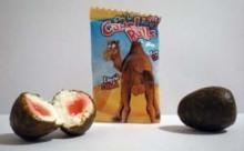 Des testicules de chameaux à mâcher en vente au Maroc