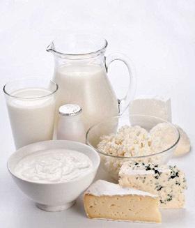 Yaourts, fromage blanc, petits-suisses... Les produits laitiers sous toutes leurs formes apportent calcium et protéines.
