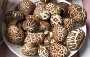 Deuxième champignon le plus cultivé dans le monde, le shiitake permet de faire le plein de cuivre, de sélénium et de zinc.