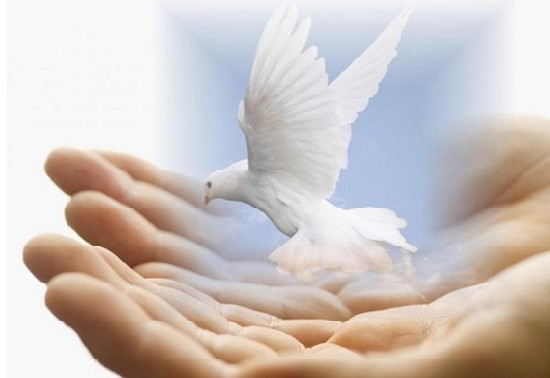 Avis aux terroristes : notre religion est de paix, d'amour et de sincérité