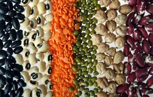 Les légumineuses, souvent appelées « légumes secs » (fèves, haricots secs, lentilles, pois secs, soja...), sont une bonne source de protéines et remplacent avantageusement la viande.