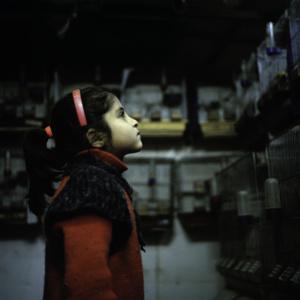 Le photographe Mohamed Lazare Djeddaoui offre un regard différent sur la Syrie.