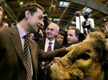 Nicolas Sarkozy au Salon de l'agriculture hier