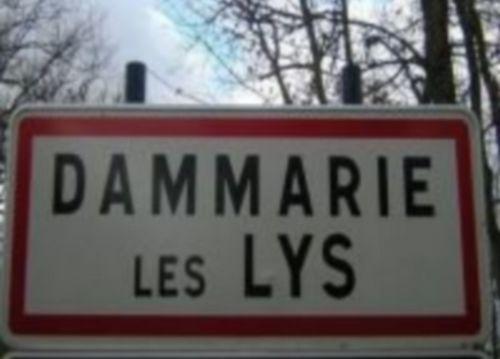 Seine-et-Marne : des tombes musulmanes profanées