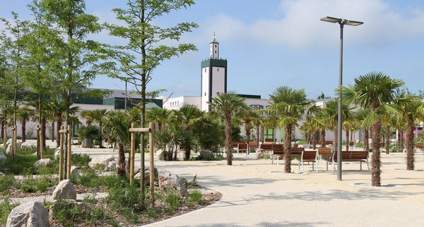 Magnanville : une mosquée collecte plus de 5 000 € pour les familles des policiers