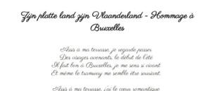 Zijn platte land zijn Vlaanderland - Hommage à Bruxelles