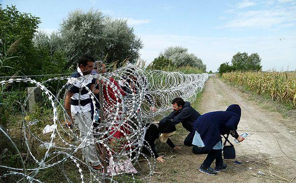 Migrants franchissant la frontière hongroise, août 2015.