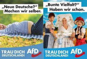 Allemagne : l'entrée tonitruante de l'AfD, parti islamophobe et xénophobe, au Bundestag