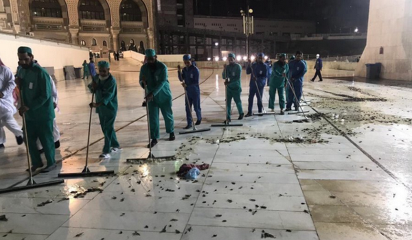 Une impressionnante invasion de criquets et de sauterelles à La Mecque (vidéo)