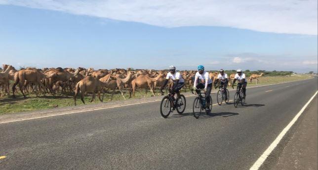 Hajj 2019 : du Kenya à La Mecque, quatre pèlerins ont parcouru 3 500 km à vélo