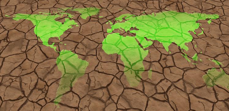 Au Moyen-Orient, l'écologie comme un chantier islamo-chrétien majeur