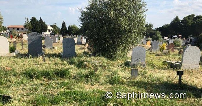 Au cimetière de Montfavet, à Avignon, les habitants déplore de l'état du site, ici dans le carré musulman en date du mardi 1er juin.