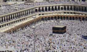 Vivre pleinement l'Aïd al-Adha sans sacrifier d'animal