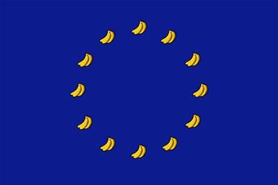 Européennes : Les Indivisibles entrent en campagne pour la diversité