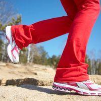 Excellent sport pour la santé, le mental et la ligne, la marche à pied est un bon préparatif pour le pèlerinage. La marche tonifie les muscles des jambes, ceux de la colonne vertébrale et les abdominaux. Les articulations deviennent plus souples et plus solides.