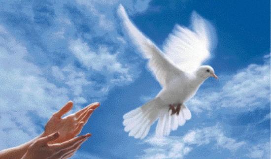 GAIC : message de paix à l'occasion de Noël 2014