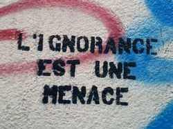 De Paris à Bangui, des religieux musulmans alertent contre « le danger de l'ignorance »
