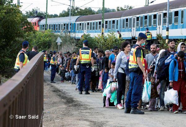 Embarquement à Zakany, au sud de la Hongrie, à bord de trains réformés, tristement surnommés « les trains à bestiaux ». Direction Hegyeshalom, près des frontières autrichiennes. Zakany (Hongrie), octobre 2015. © Saer Saïd