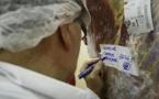Belgique : la Wallonie interdit l'abattage sans étourdissement
