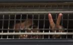 Palestine : les prisonniers en grève de la faim dans un état critique