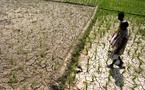 La FAO réclame la fin de la faim sans succès
