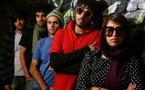 L'Iran des Chats persans