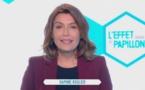 Canal + met fin à L'effet Papillon : Gaza, Centrafrique, Japon, USA... six reportages à revoir (vidéo)