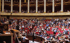 Législatives : vers une Assemblée nationale un brin colorée ?