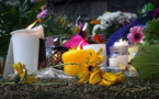 Attentats de Christchurch : l'Autriche abandonne l'enquête visant un groupuscule identitaire