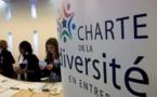 La Charte de la diversité sans effet contre les discriminations ethniques