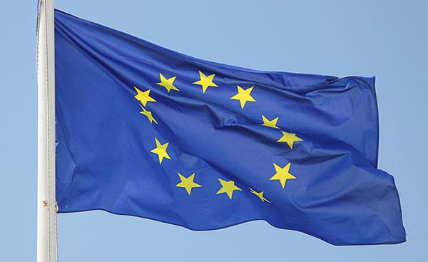 L'extrême droite en Europe : des visages multiples pour des risques communs