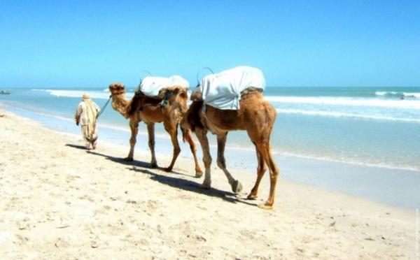La Tunisie à la reconquête d'un tourisme en perte de vitesse